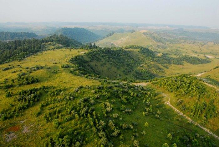 The elk landscape 2